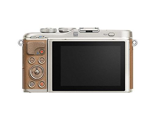 Olympus with Camera Card, Brown
